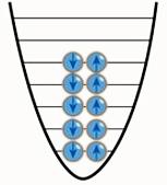 фермиони бозони принцип на Паули